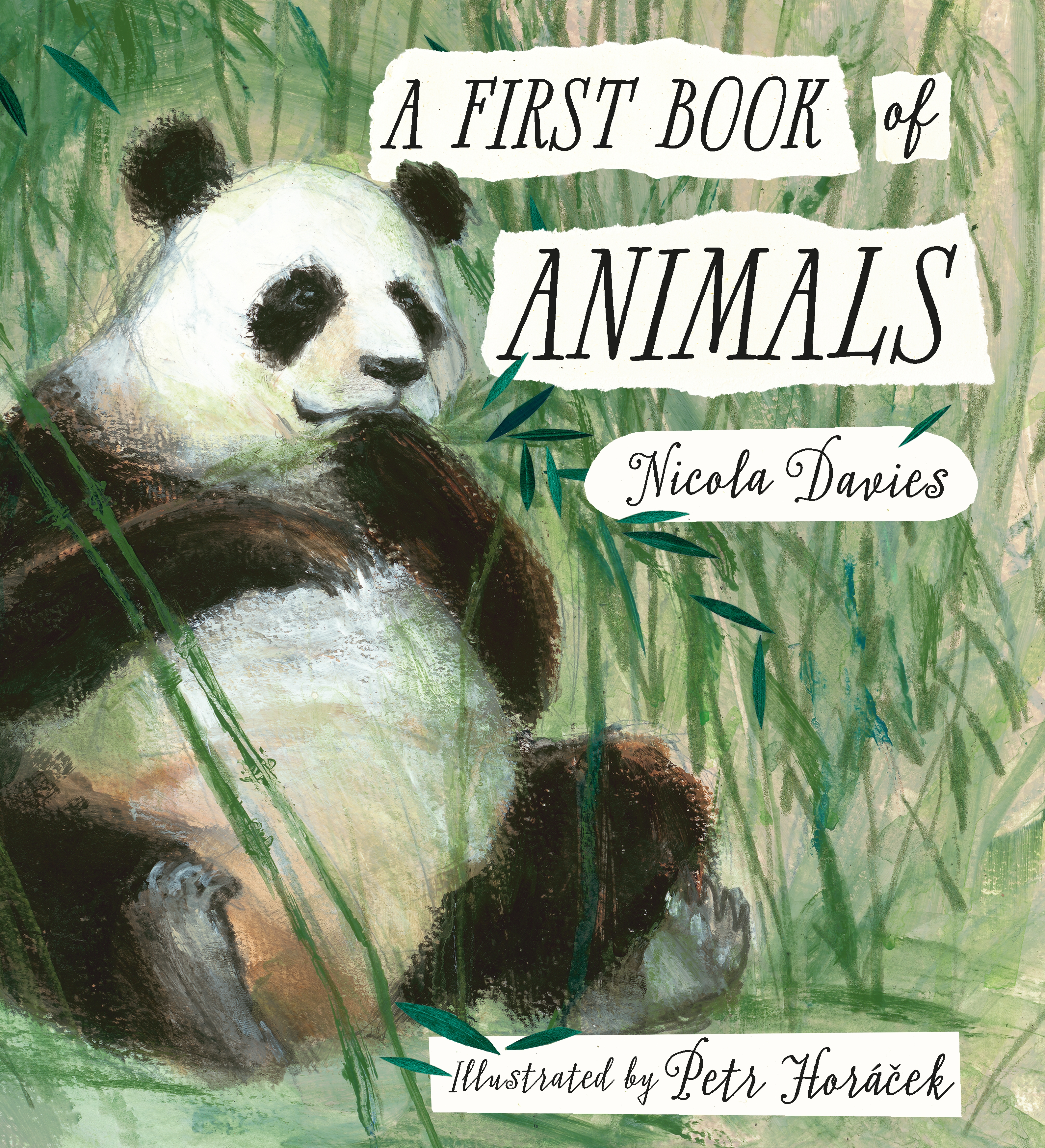 a first book of animals poems reading agency
