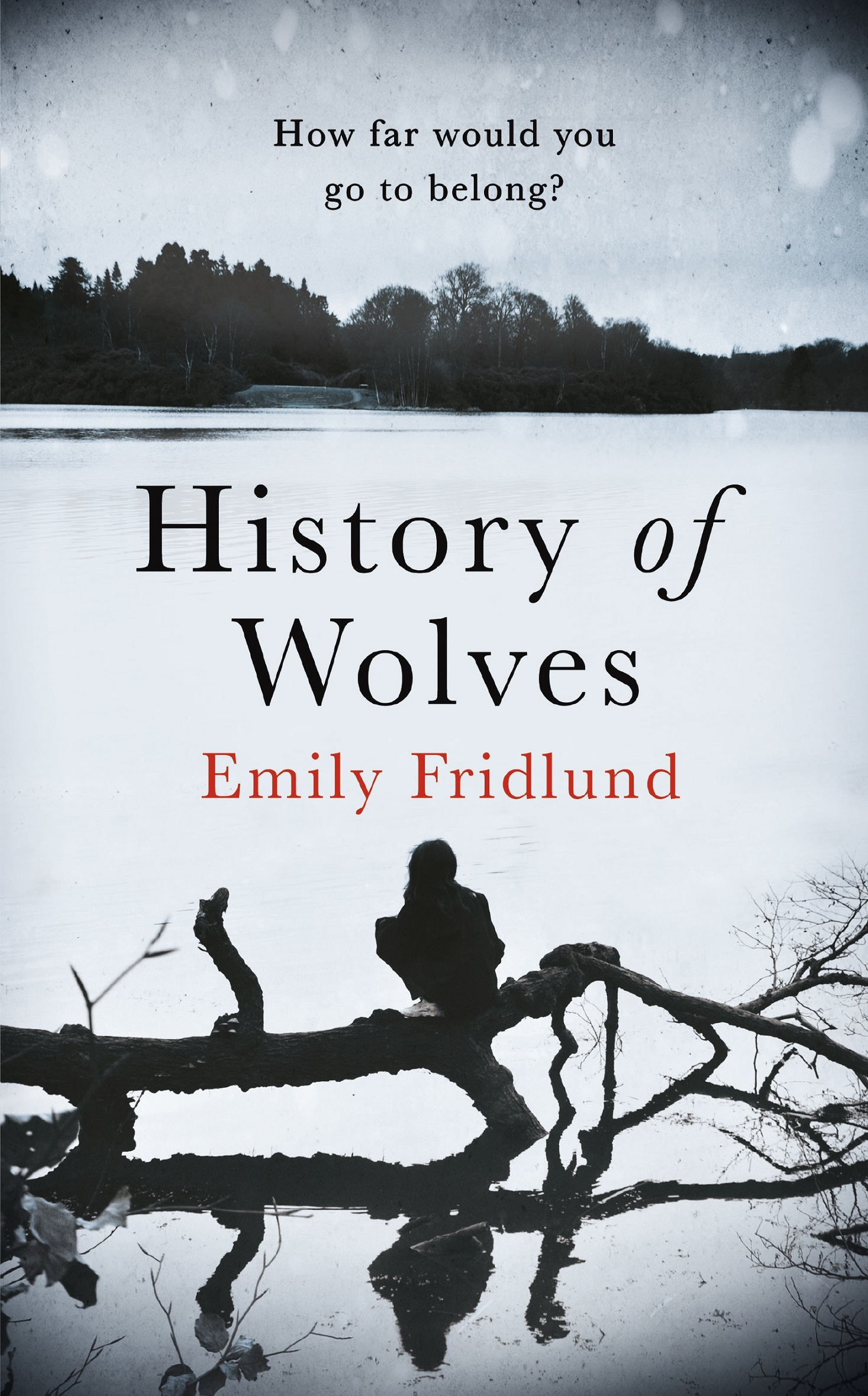 Emily fridlund history of wolves