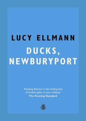 Thumb lucy ellman ducks  newburyport