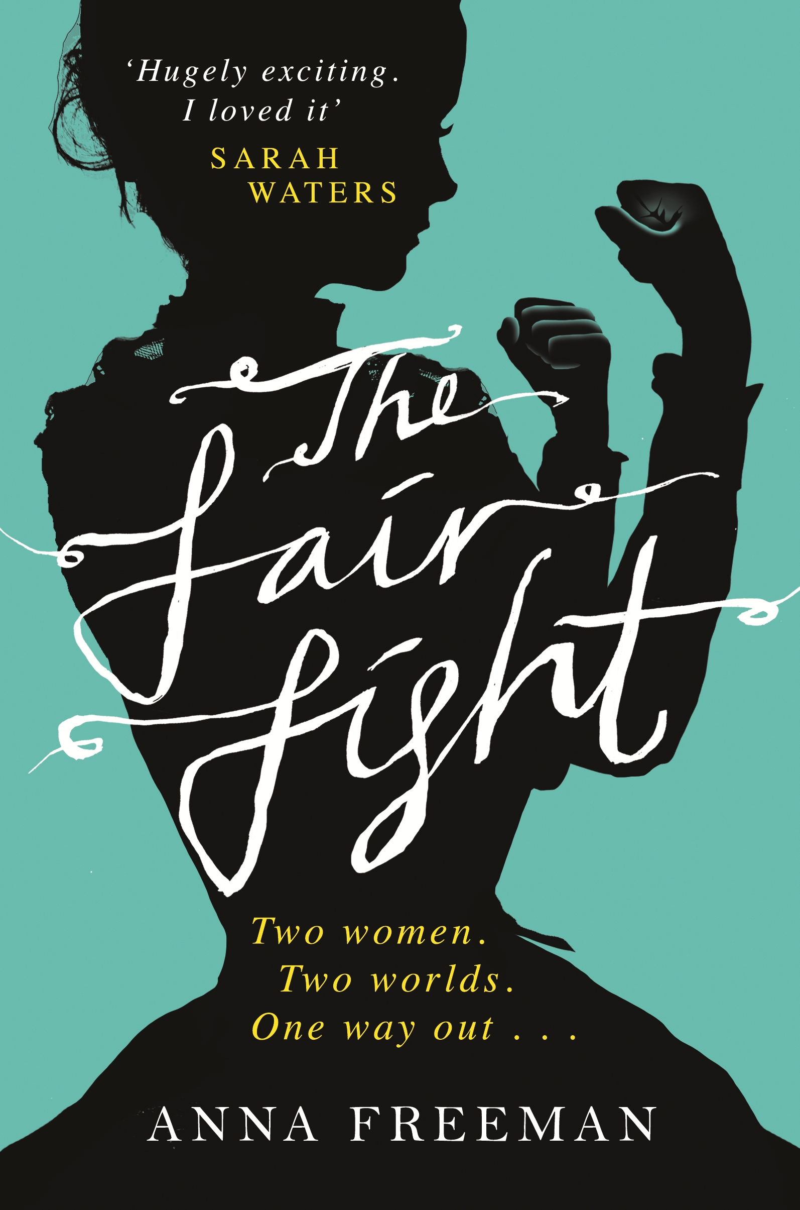 The fair fight cover